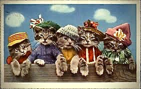 Group of 5 tabby kittens in costumes and hats